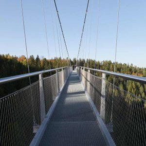 Wildline Bridge, Germany